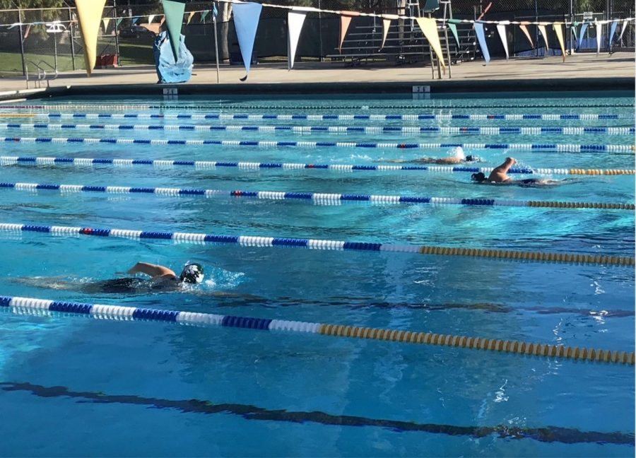 To follow safety protocols, swimmers are given their own lane to practice.
